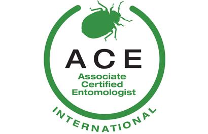 ACE_logo_international