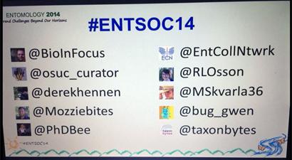 ent2014-twitter-wp