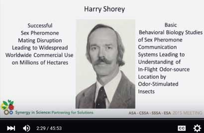 harry-shorey