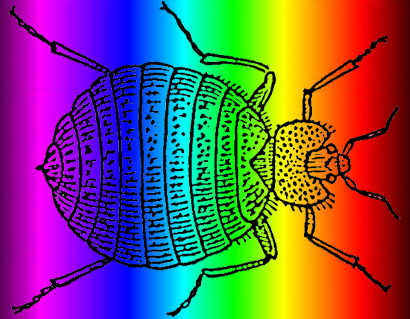 https://entomologytoday.org/2016/04/25/bed-bugs-favorite-colors-are-red-and-black/