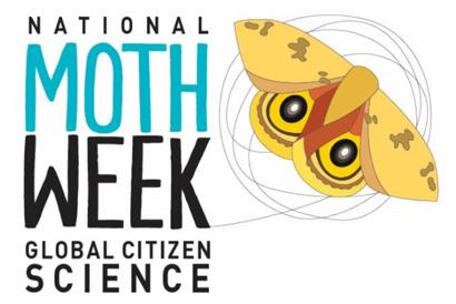 nat-moth-week