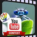 YouTube Your Entomology Contest