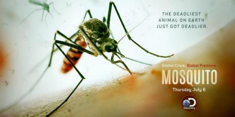 discovery mosquito documentary banner